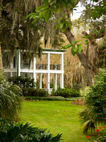"""The Plantation at Leu Gardens"" by Mike Hurley"